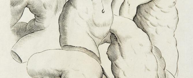 Anonimo_Facillima Methodus Delineandi omnes Humani corporis partes_1756