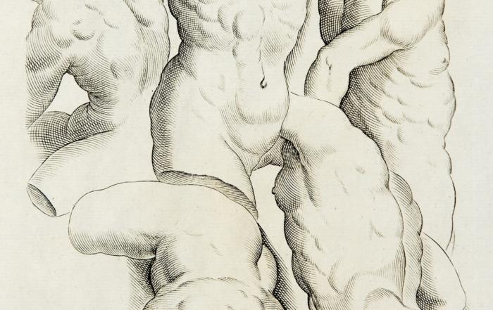 Corpi di carta