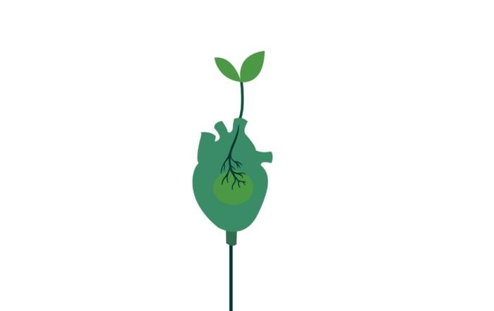 IMMAGINARE IL FUTURO. Arte e sostenibilità